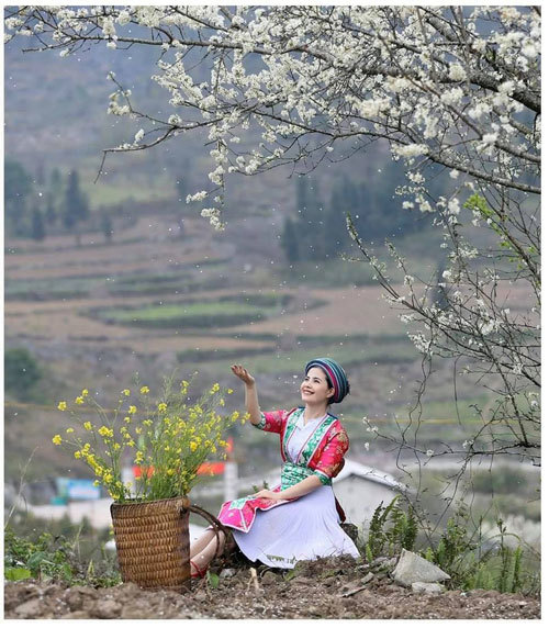 Beauty of women in Ha Giang Province's plateau of rocks