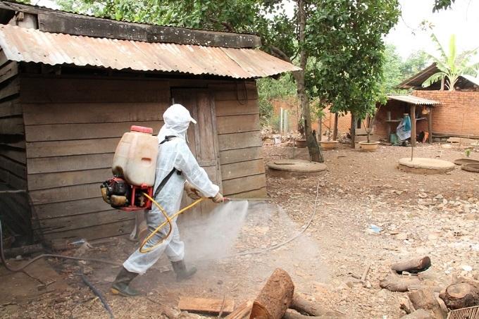 Đắk Lắk tập trung nguồn lực để khống chế, dập dịch cúm gia cầm