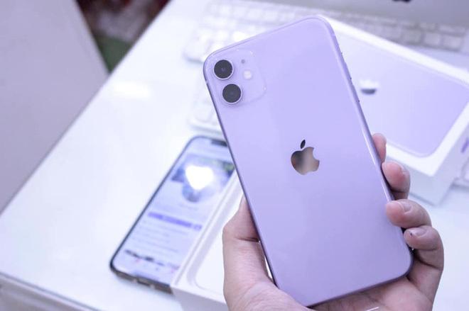 Giá iPhone 11 giảm xuống dưới 12 triệu đồng, hàng chưa đập hộp 'bay' 6 triệu