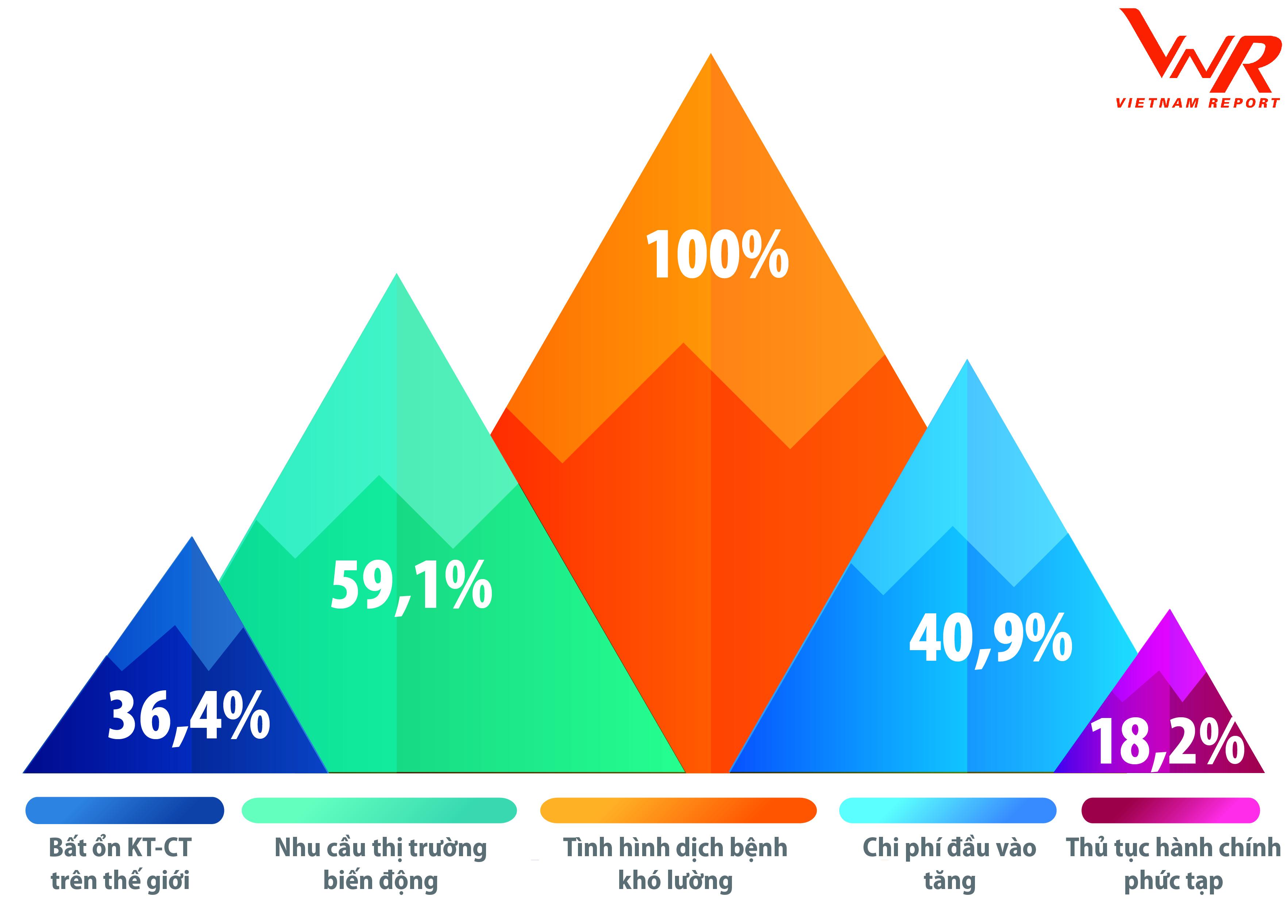Top 500 Doanh nghiệp tăng trưởng nhanh nhất Việt Nam 2021