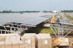 Solar power developers' capacity still not fully used up
