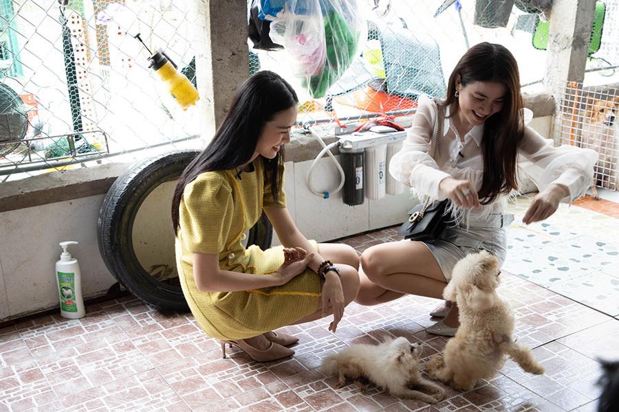 Diệp Bảo Ngọc thăm tổ ấm của gần 100 thú cưng tật nguyền