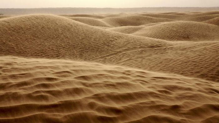 Khủng hoảng cát toàn cầu đang diễn ra trầm trọng thế nào?
