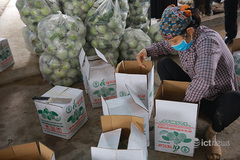Farmers get help to sell produce via e-commerce