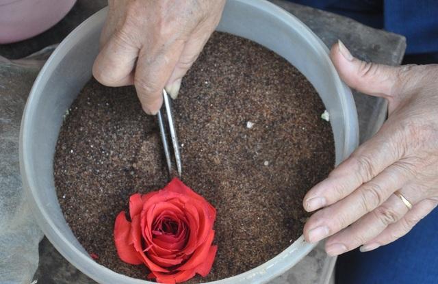 Khởi nghiệp 50 tuổi, nữ giúp việc trở thành chủ cơ sở 'hoa bất tử'