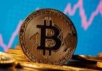 Bitcoin lao dốc không phanh, về lại đáy 46.000 USD