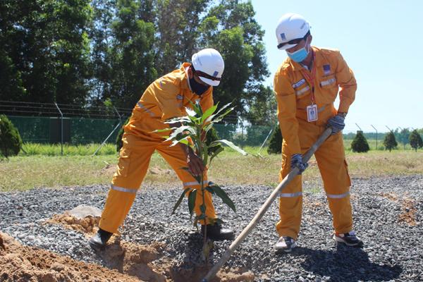 Công ty Vận chuyển Khí Đông Nam Bộ vượt chỉ tiêu kế hoạch trồng cây