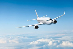 Local airline disbanded amid Covid-19