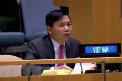 Vietnam appeals for enhanced efforts to address conflict-driven hunger