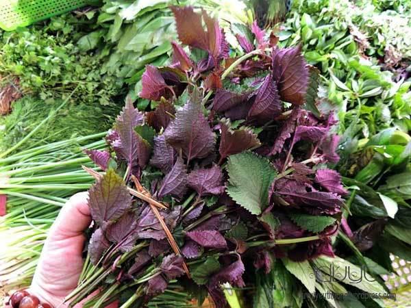Vietnamese cuisine,Vietnamese exquisite herbs