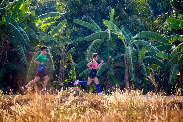 Giải chạy BaDen Mountain Marathon 2021 sẽ diễn ra vào tháng 4