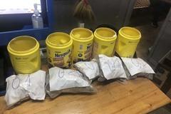 Gần 6kg thảo mộc khô nghi ma túy 'bay' từ Mỹ về Tân Sơn Nhất