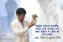 Trận 'kịch chiến' của cá chọi và bài báo 9 lần bị từ chối của TS người Việt