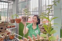 Bí quyết chinh phục hoa lan của bà chủ vườn lan Thủy Royal