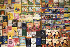 Books promote love for Vietnamese language among expats in Europe
