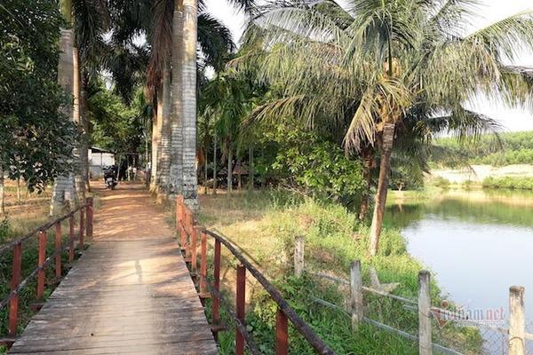 Quảng Trị lên tiếng về việc bổ nhiệm lại giám đốc chiếm đất rừng