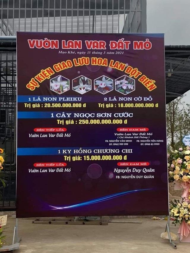 Quảng Ninh vào cuộc xác minh thương vụ lan var 250 tỷ đồng