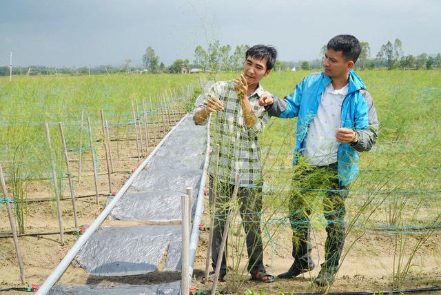 8X Quảng Ngãi dùng chiêu 'đổi rác lấy rau' để trồng vườn cây 5.000m2