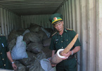 Actions needed to combat illegal trade of ivory and wildlife in Vietnam: WWF
