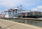 Increasing maritime transport cost making export difficult