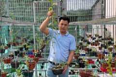 Ông chủ vườn lan 8X mê lan từ thuở nhỏ