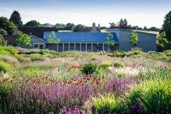 Khu vườn hàng nghìn cây hoa của đại gia bỏ biệt thự về quê làm nông dân