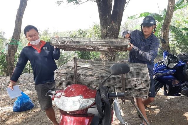 Chợ chuột đồng ở vùng biên 'bán bao nhiêu mua hết bấy nhiêu'