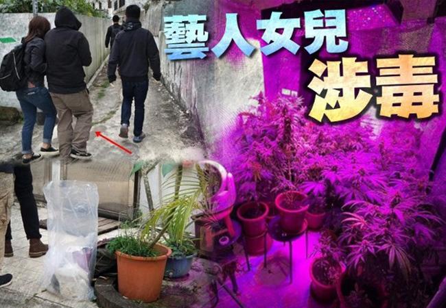 Con gái danh hài Hong Kong bị bắt vì buôn ma túy