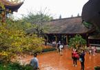Majestic beauty of Sacred Yen Tu Mountain