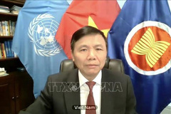 Vietnam supports all initiatives, efforts helping with Middle East Peace Process: ambassador