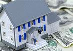 Land speculation continues, realtors incur big losses