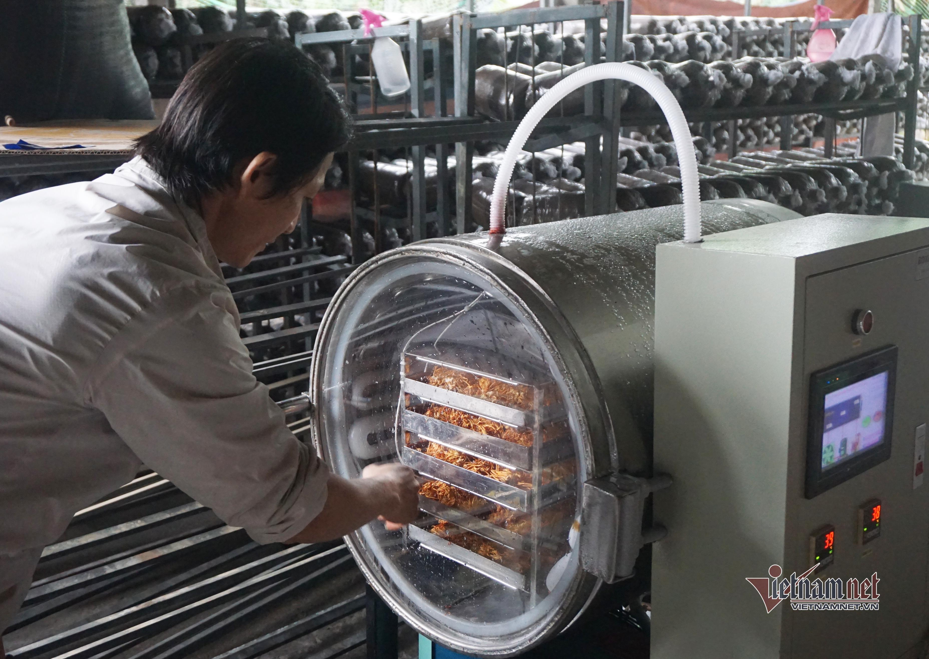 Nông dân lên mạng mày mò cách trồng nấm, mỗi năm bỏ túi gần nửa tỷ