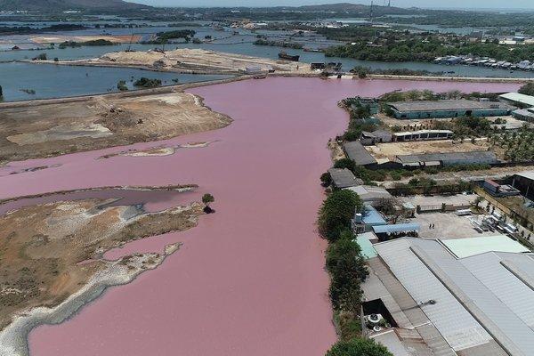 Đầm chứa nước xuất hiện màu tím, nghi do xả thải gây ô nhiễm ở Vũng Tàu