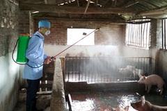 Vĩnh Phúc triển khai các đợt phun khử trùng, tiêu độc môi trường chăn nuôi