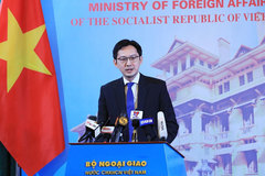Vietnam to promote regional organisations' role in settling disputes: Diplomat