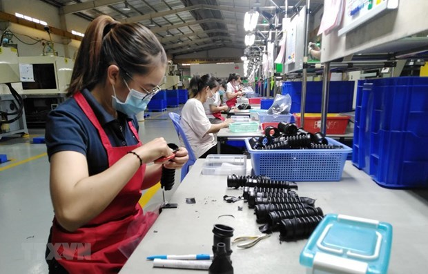 The biggest decline in VN labor market in a decade