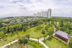 Giải pháp phát triển kinh tế theo hướng tăng trưởng xanh tại Việt Nam