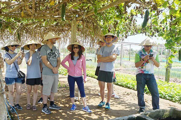 VNAT plans to pilot international tourism resumption in Q3