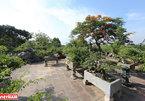 Hong Van bonsai village on Hanoi's outskirts