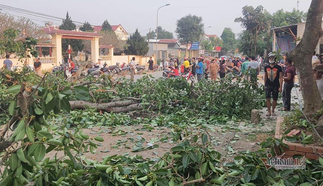 Gãy cây đa cổ thụ 300 năm tuổi ở Nghệ An, 4 học sinh gặp nạn