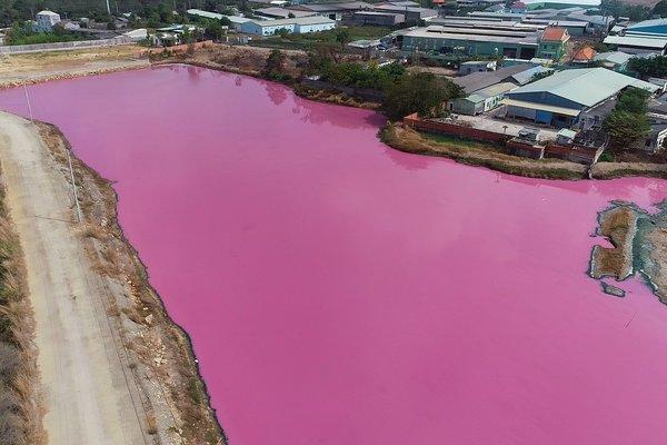 Doanh nghiệp xả thải vượt quy chuẩn, đầm nước đổi màu tím ngắt