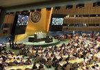 Vietnam affirms international position via role in UNSC