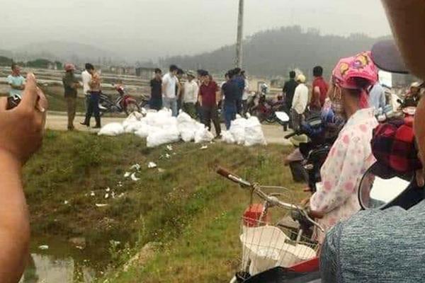 Bắt giữ hơn 2 tạ ma túy ở Nghệ An