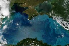Nơi duy nhất trên Trái Đất vẫn đang diễn ra Kỷ băng hà