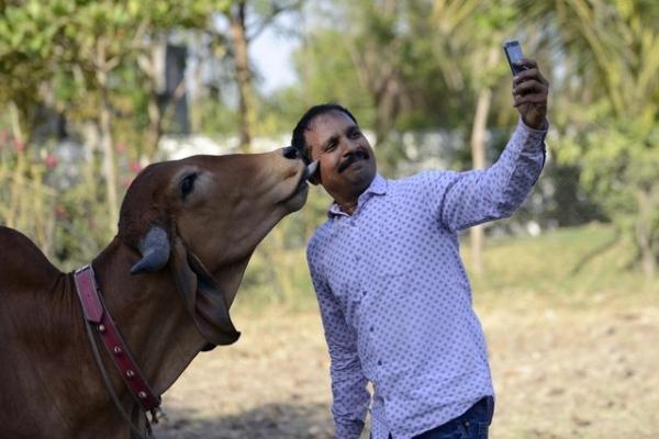 Ấn Độ đau đầu vì nhiều người chết do mải chụp ảnh 'tự sướng'