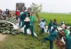 29 tấn dưa hấu đổ xuống ruộng, dân Hà Tĩnh giúp tài xế thu gom