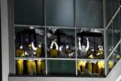 Hàng chục phạm nhân Mỹ phóng hỏa đốt nhà tù