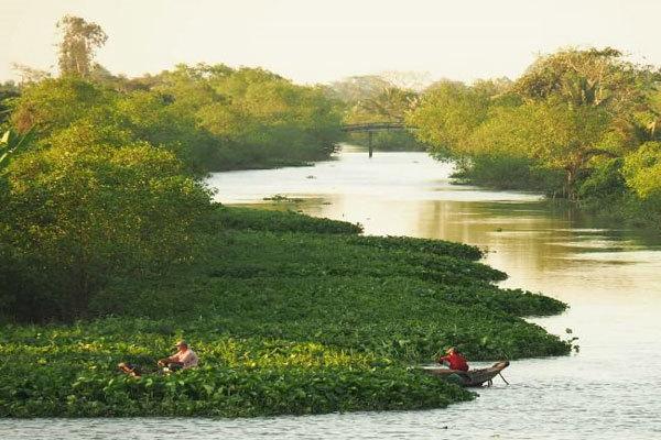 Fruit islands in Mekong Delta to explore