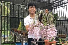 Anh công nhân đất mỏ say mê hoa lan