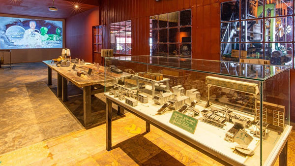 Da Lat travel,Cau Dat Farm Ancient Tea Museum